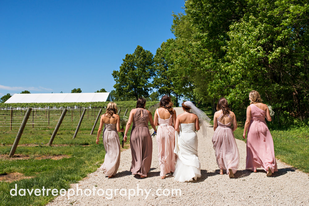 michigan_vineyard_wedding_photographer_davetree_photography_489.jpg