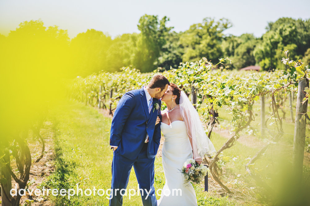 michigan_vineyard_wedding_photographer_davetree_photography_317.jpg