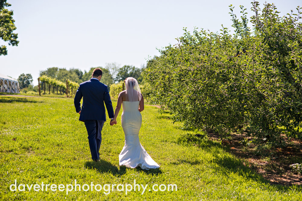 michigan_vineyard_wedding_photographer_davetree_photography_370.jpg