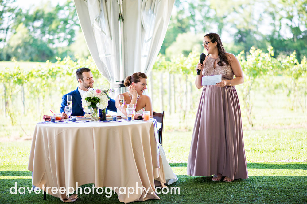 michigan_vineyard_wedding_photographer_davetree_photography_426.jpg