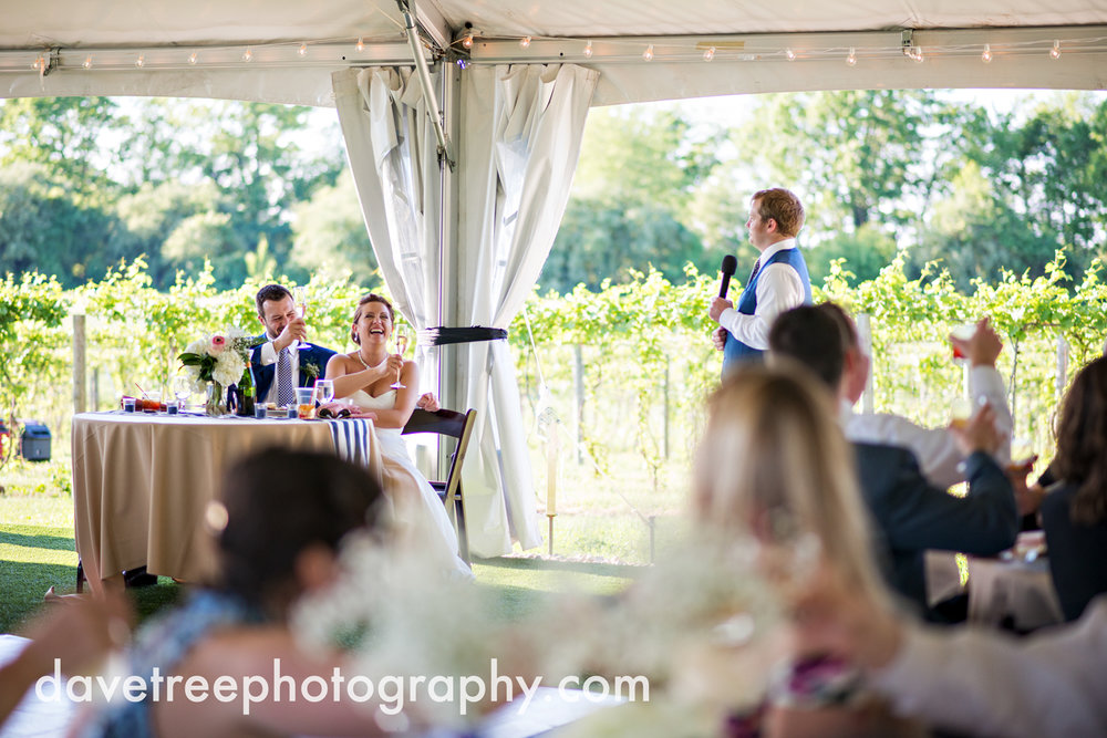 michigan_vineyard_wedding_photographer_davetree_photography_429.jpg