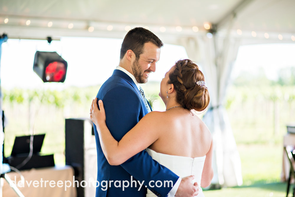 michigan_vineyard_wedding_photographer_davetree_photography_439.jpg