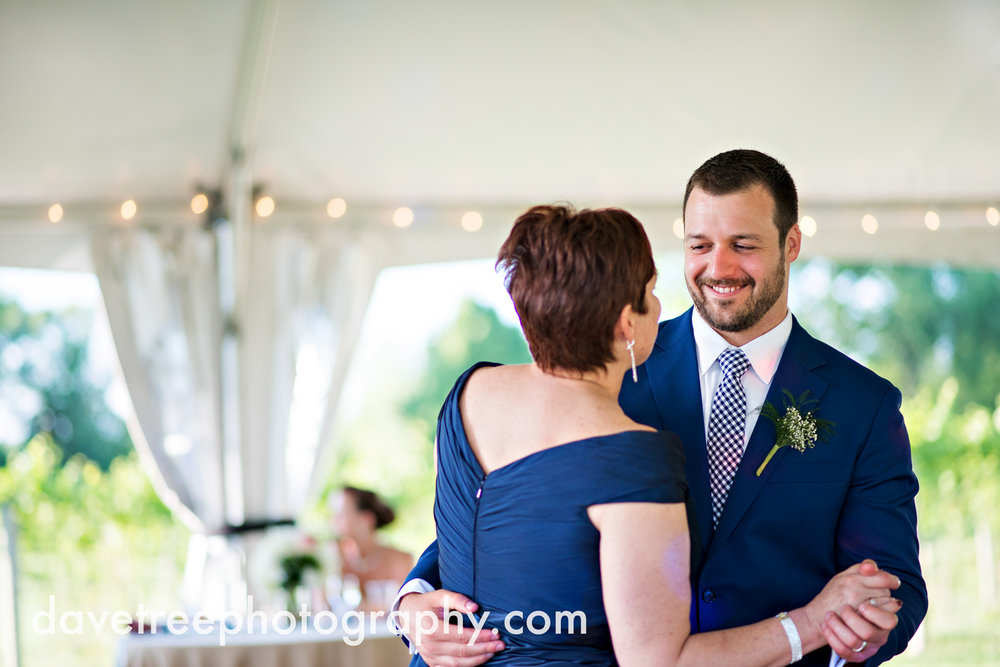 michigan_vineyard_wedding_photographer_davetree_photography_445.jpg