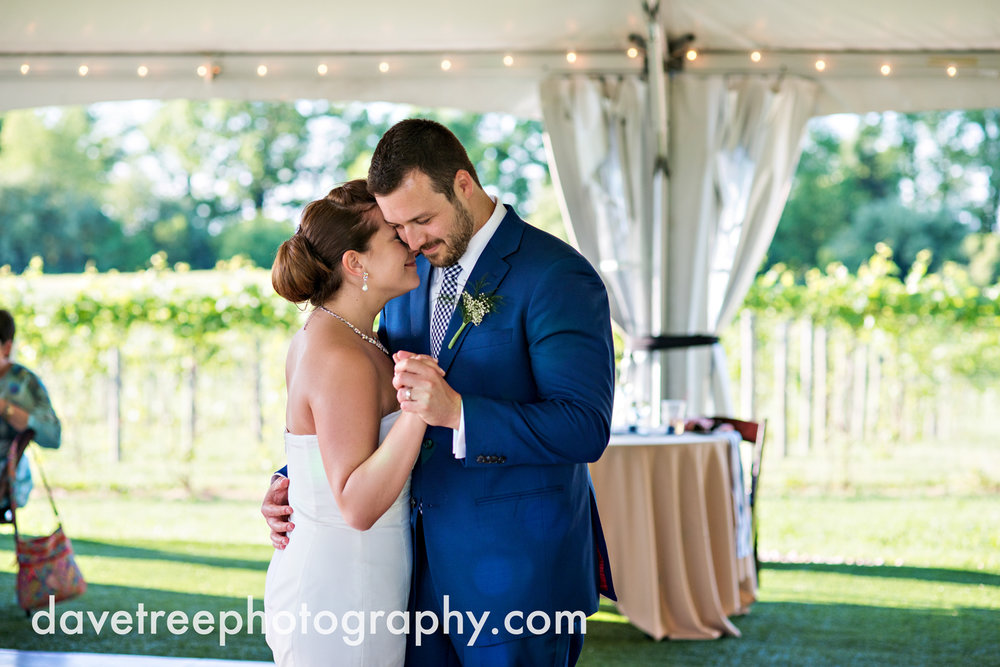 michigan_vineyard_wedding_photographer_davetree_photography_448.jpg