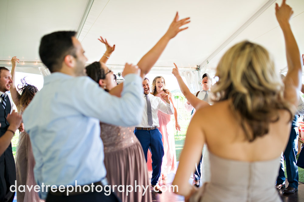 michigan_vineyard_wedding_photographer_davetree_photography_373.jpg