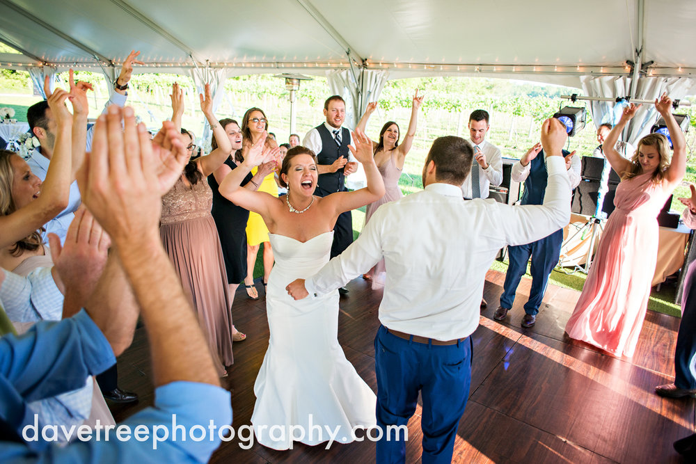 michigan_vineyard_wedding_photographer_davetree_photography_382.jpg