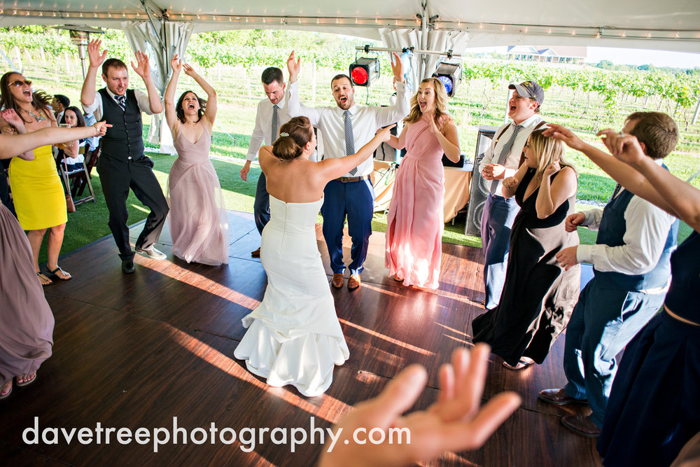 michigan_vineyard_wedding_photographer_davetree_photography_381.jpg