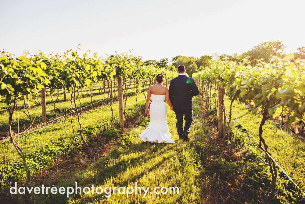 michigan_vineyard_wedding_photographer_davetree_photography_319.jpg