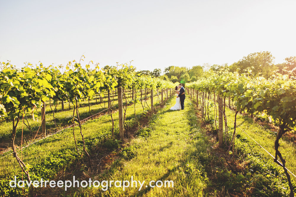 michigan_vineyard_wedding_photographer_davetree_photography_320.jpg
