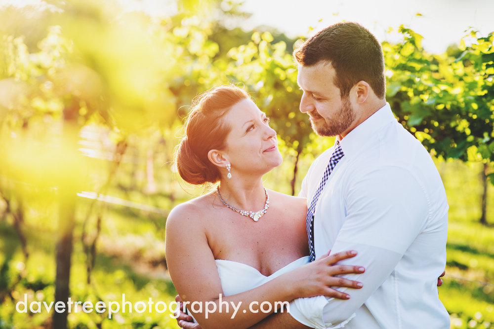 michigan_vineyard_wedding_photographer_davetree_photography_327.jpg