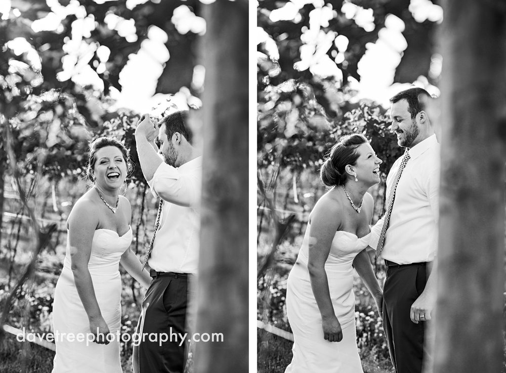 michigan_vineyard_wedding_photographer_davetree_photography_328.jpg