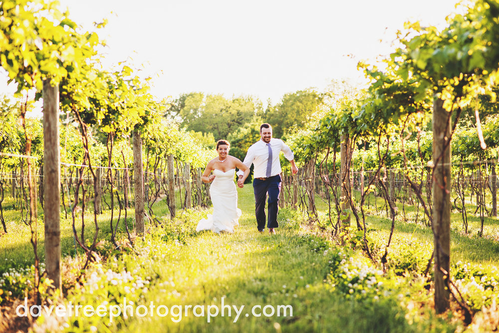 michigan_vineyard_wedding_photographer_davetree_photography_332.jpg