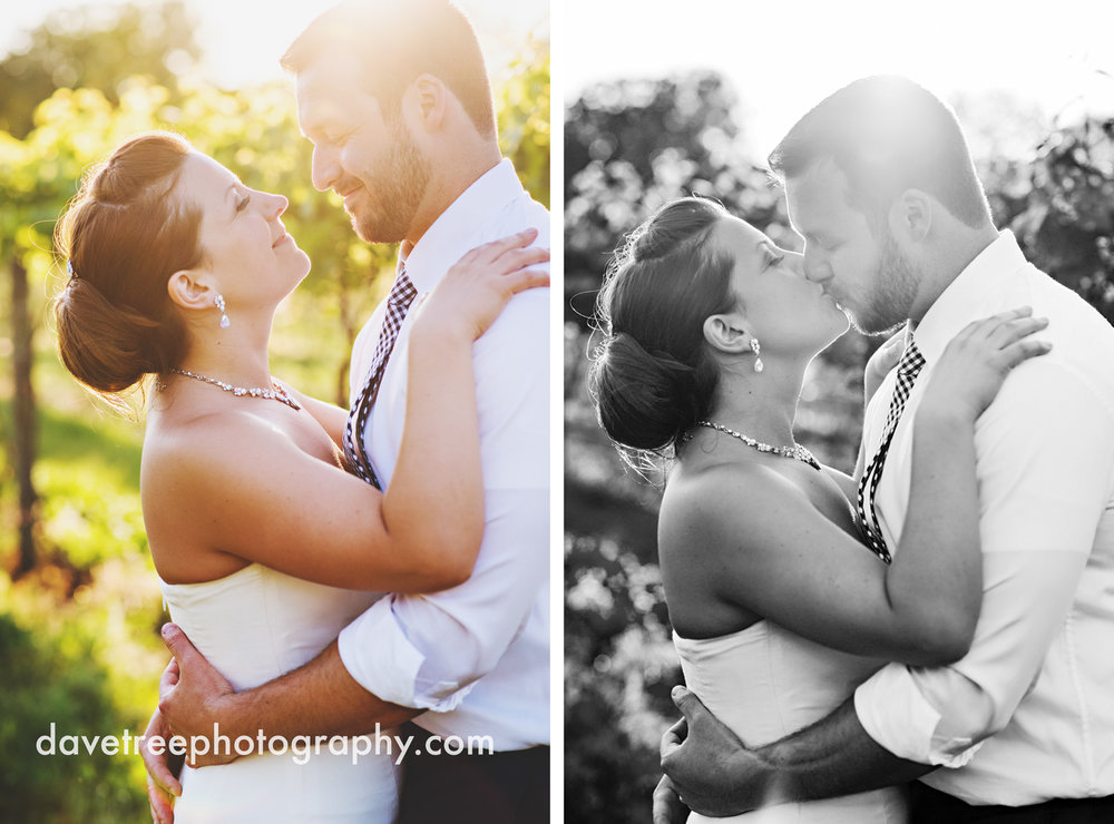michigan_vineyard_wedding_photographer_davetree_photography_336.jpg