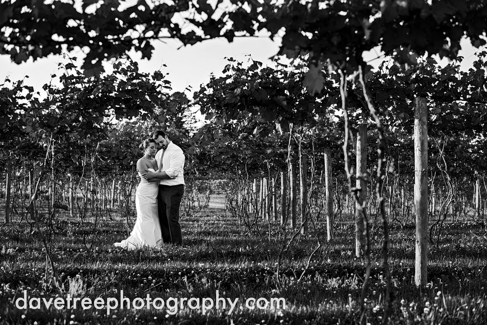 michigan_vineyard_wedding_photographer_davetree_photography_353.jpg