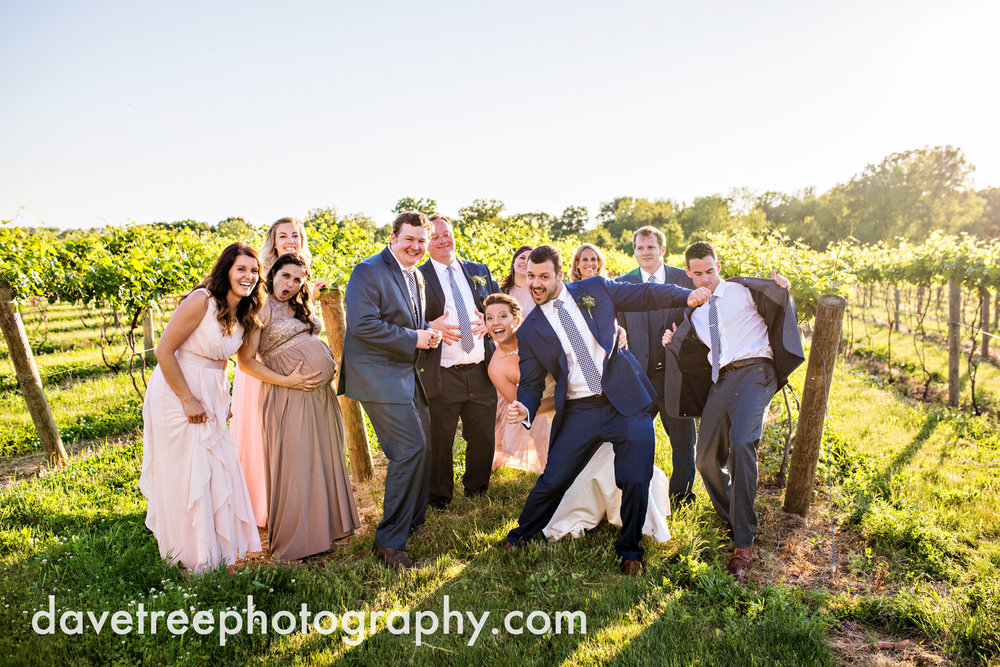 michigan_vineyard_wedding_photographer_davetree_photography_495.jpg