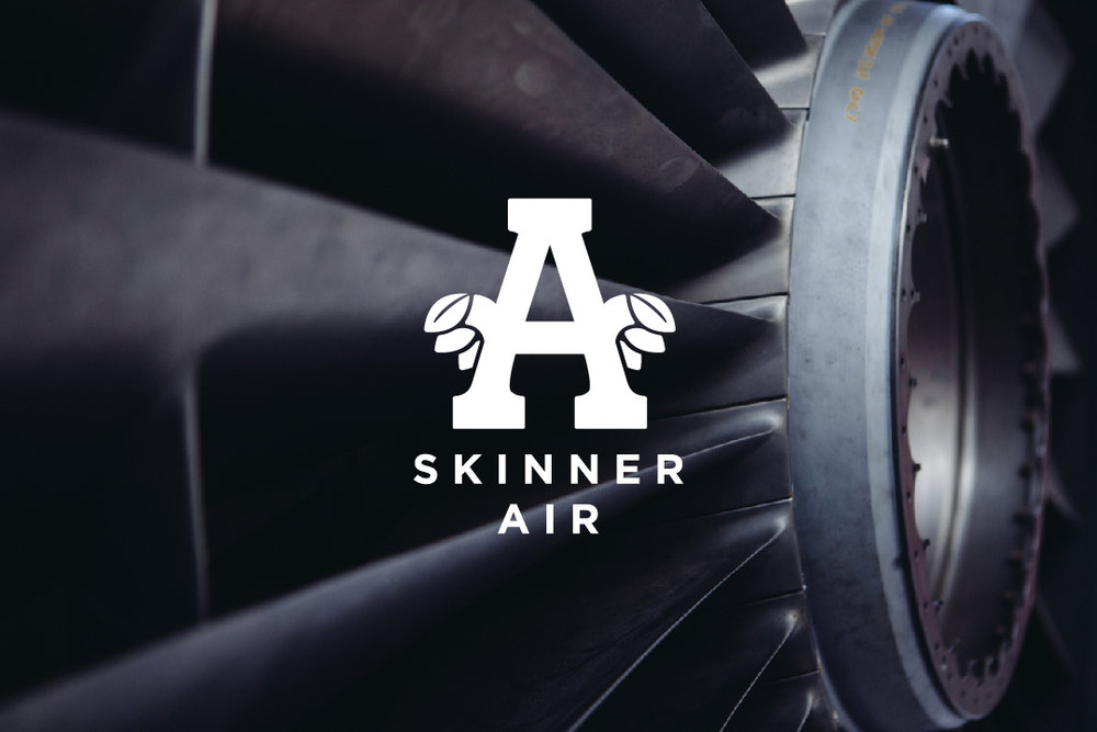 Skinner Air-01.jpg