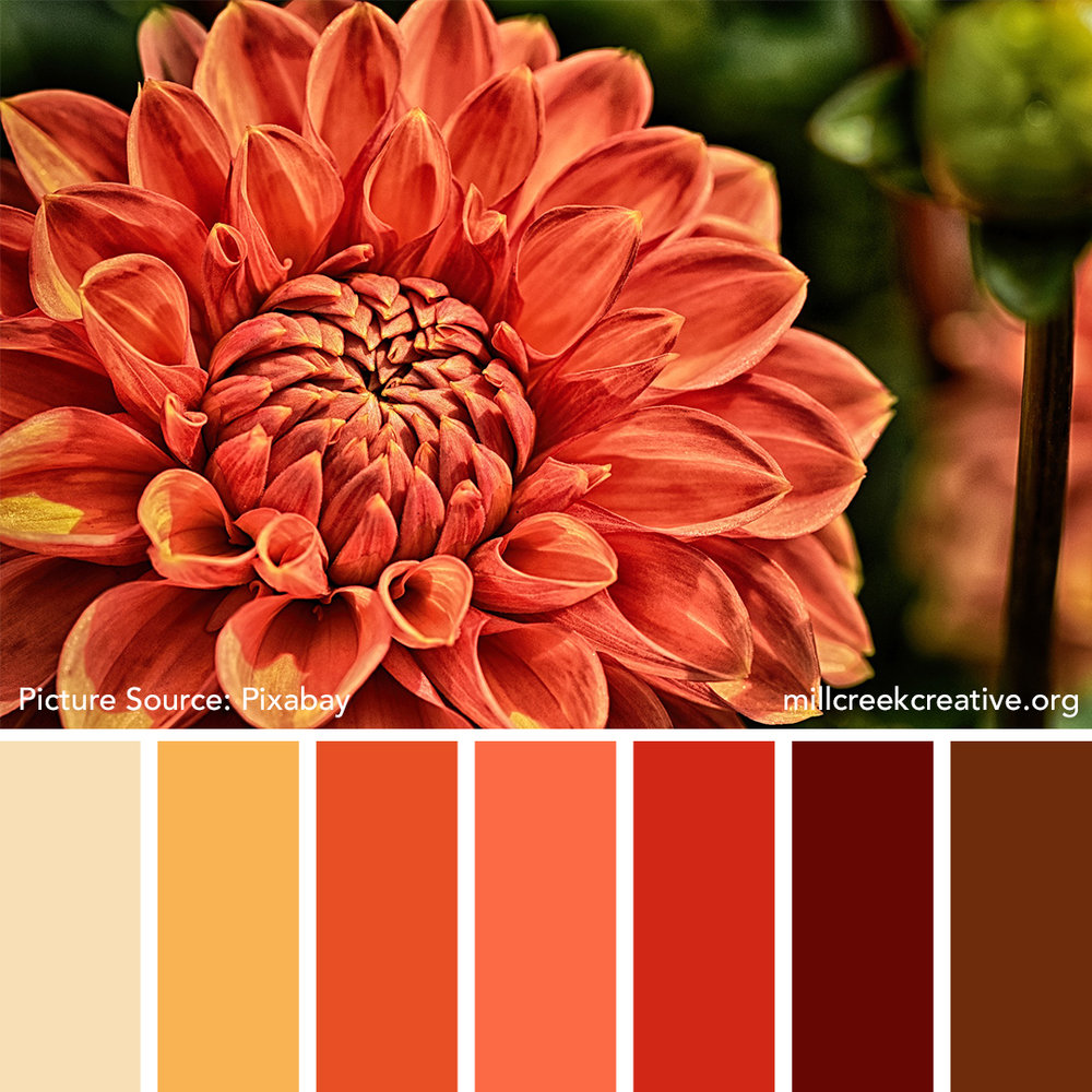 Dahlia Color Palette