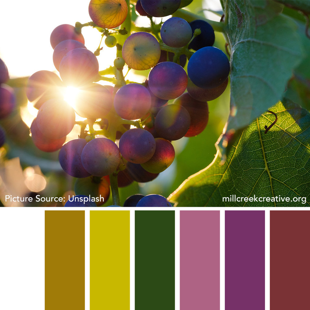 Grape Color Palette