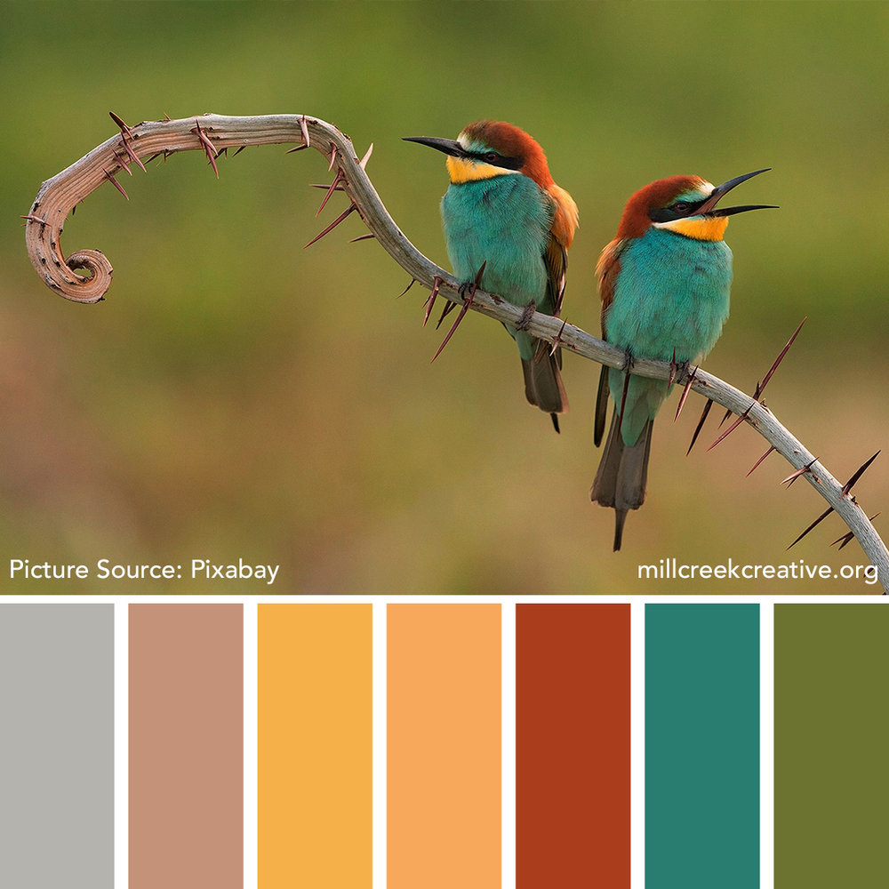 Bee Eater Color Palette