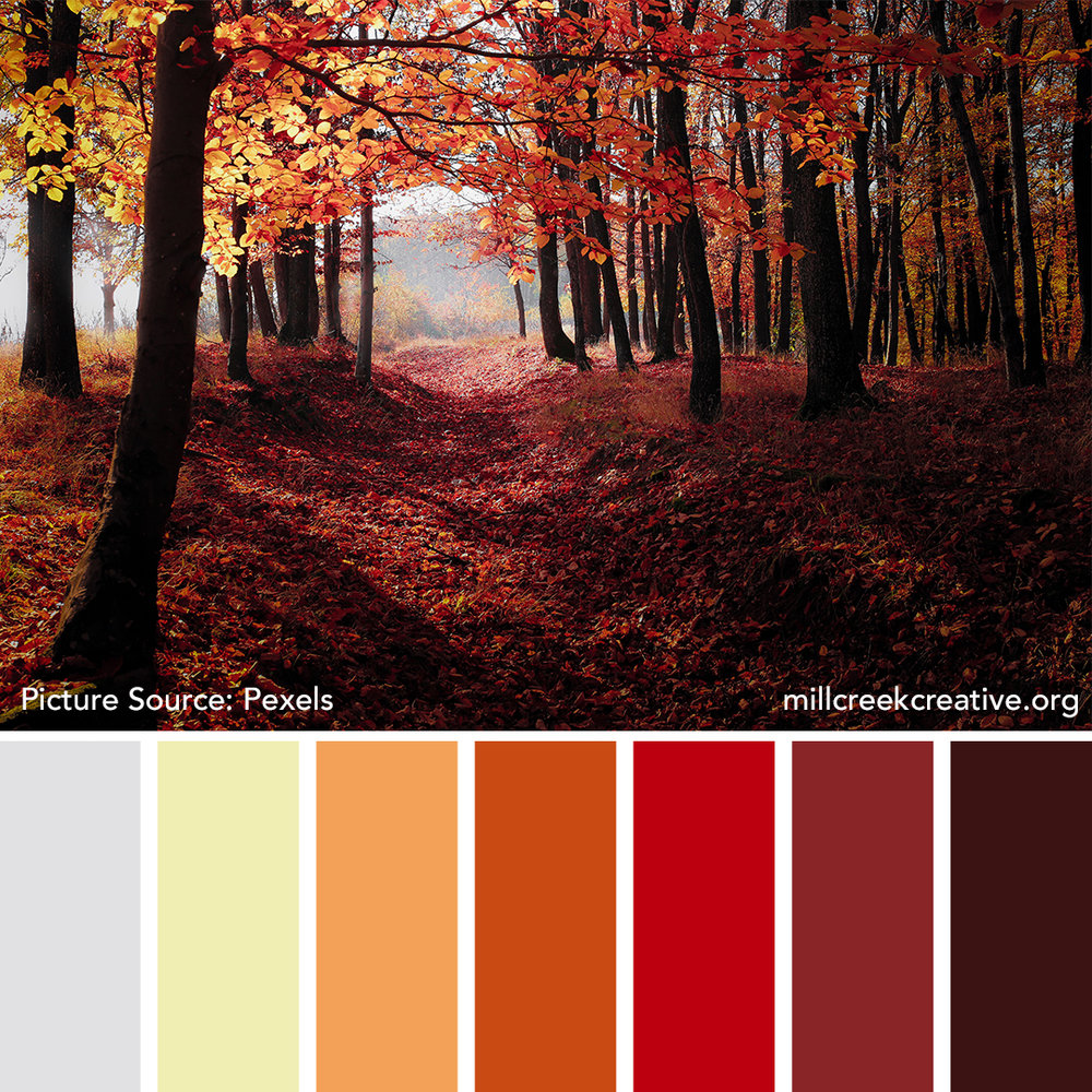 Autumn Dawn Color Palette
