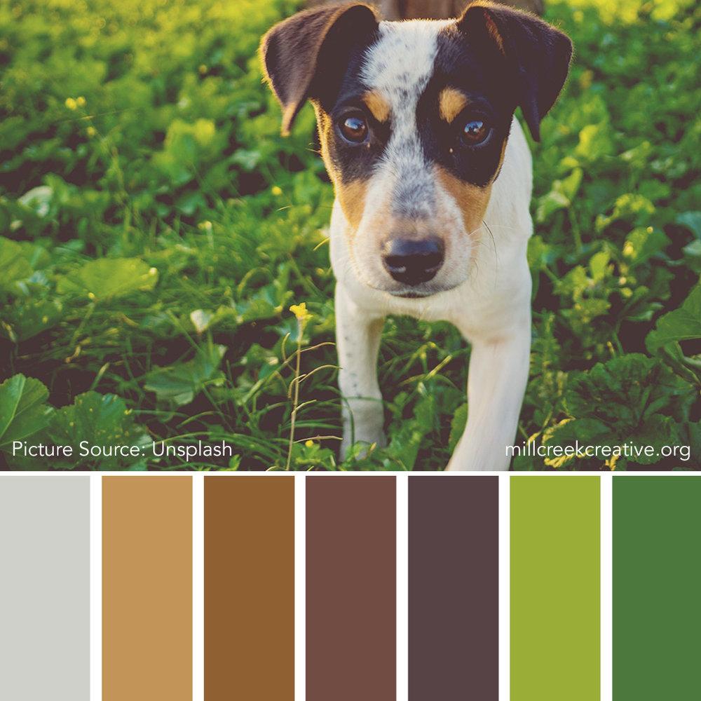 Best Day of Spring - Spring Color Palette