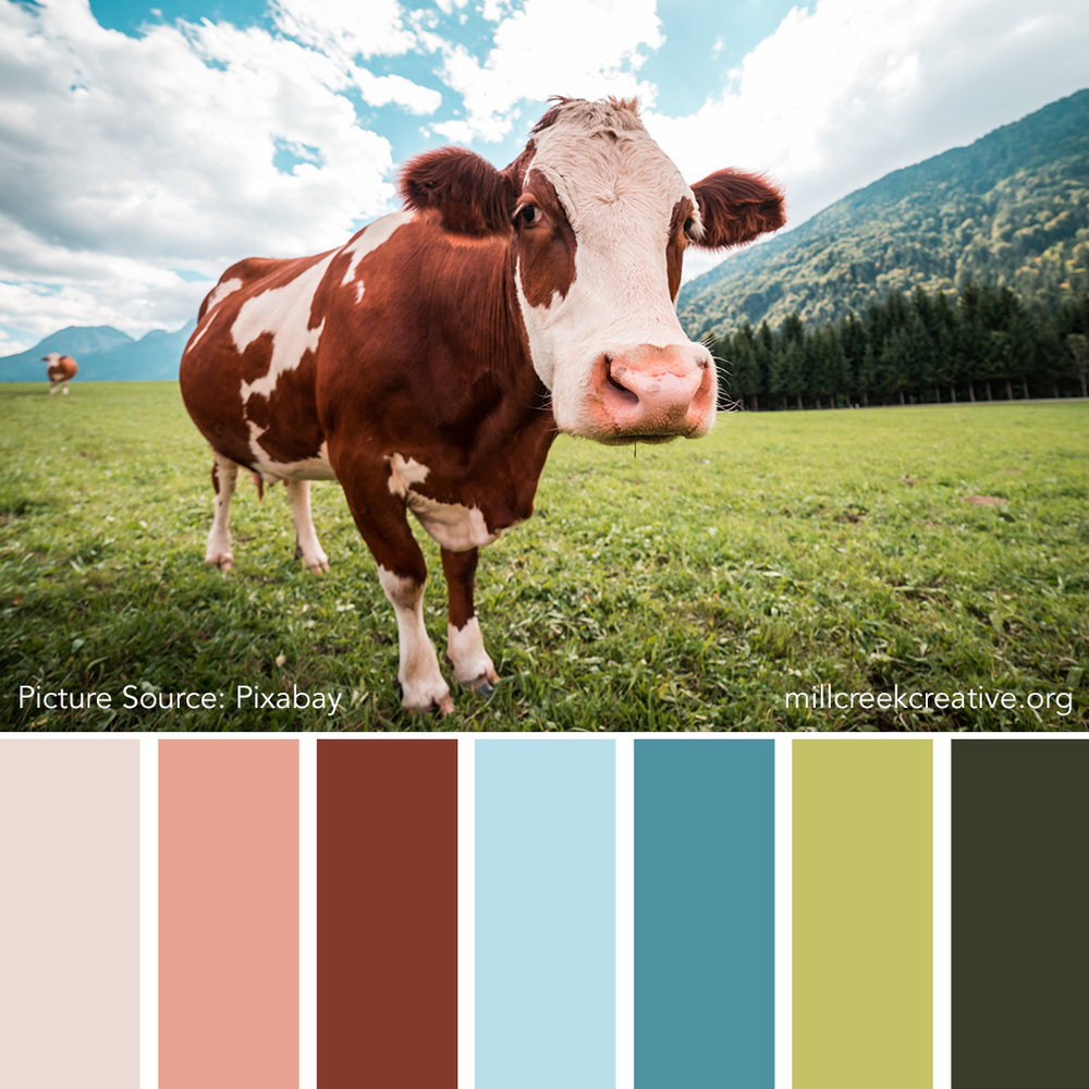MOOve-Over | Color Palettes for Design Inspiration | Mill Creek Creative