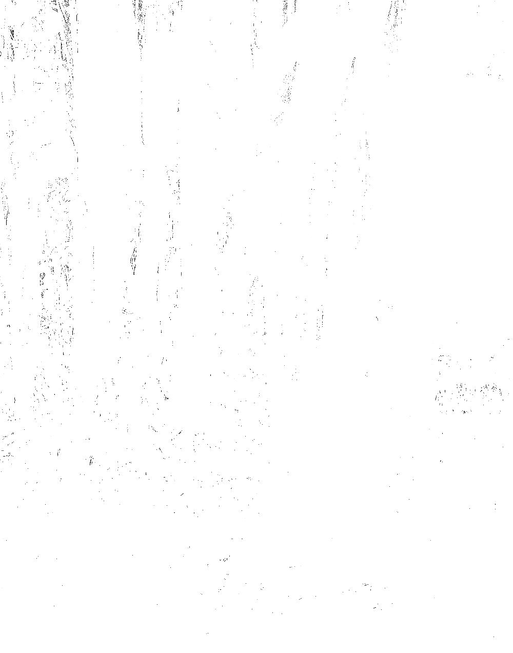 claudetayag-9294.png