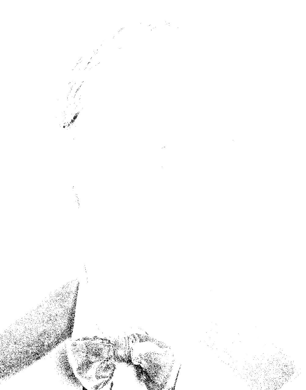 benny-4396.png