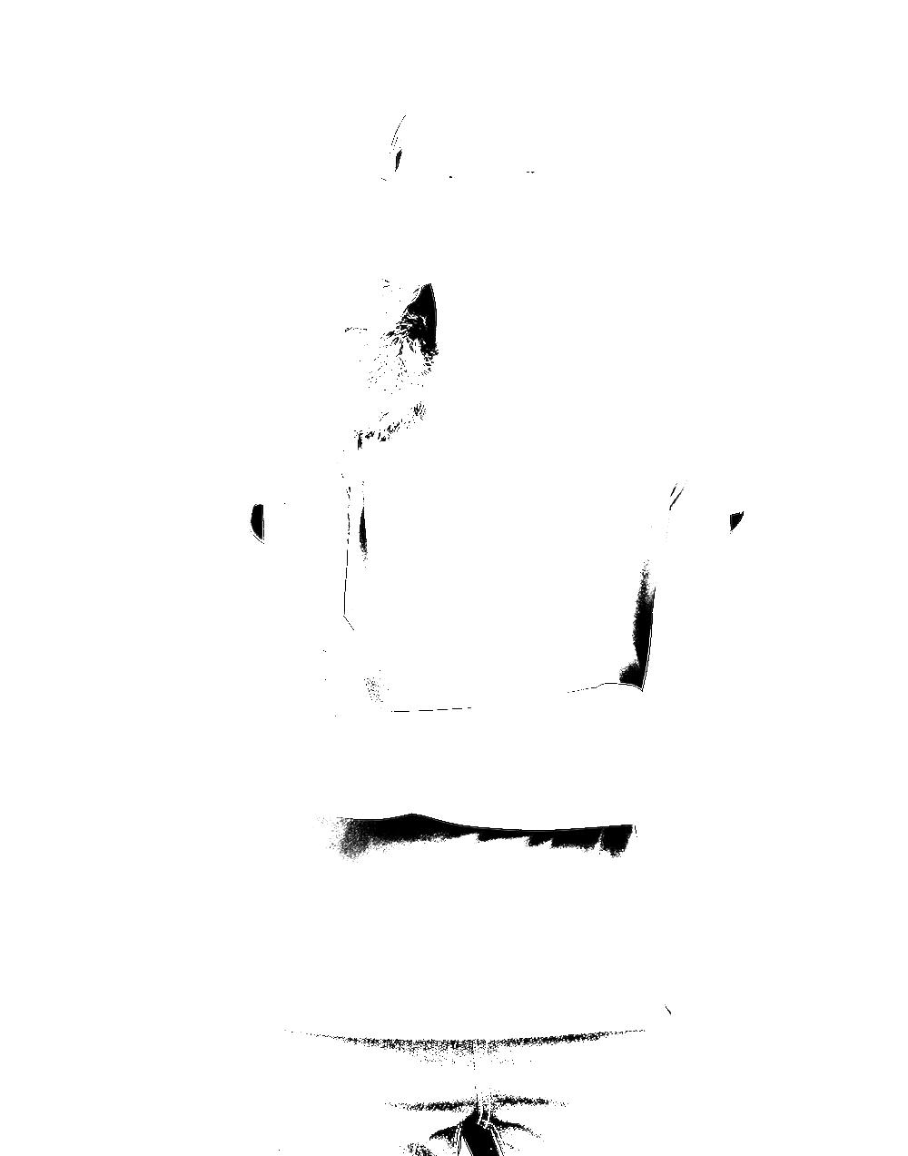 cody-9531.png