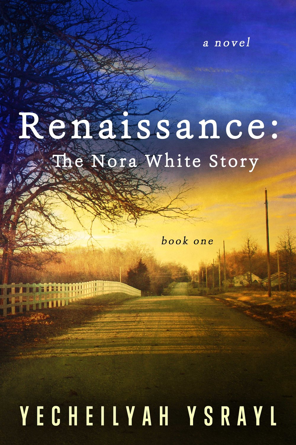 When seventeen-year-old Nora White successfully graduates High School in 1922 Mississippi and is College bound, everyone is overjoyed and excited. Everyone except Nora. She dreams of Harlem, Cotton Clubs, Fancy Dresses, and Langston Hughes. For years, she's sat under Mr. Oak, the big oak tree on the plush green grass of her families five acres, and daydreamed of The Black Mecca. The ambitious, young Nora is fascinated by the prospect of being a famous writer in The Harlem Renaissance and decides... - Keep Reading