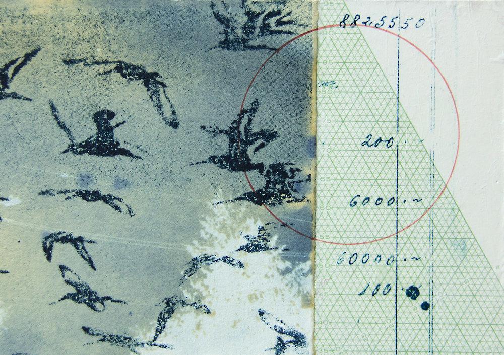 graphs and birds A.jpg