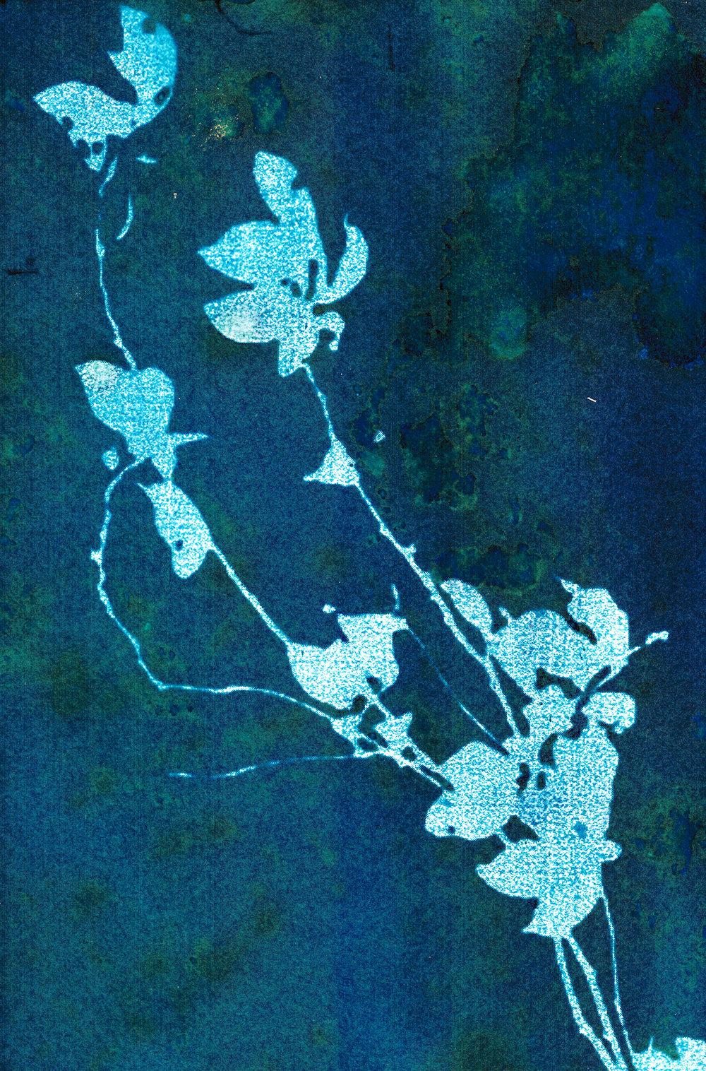 Diagonal Floral Cyanatope