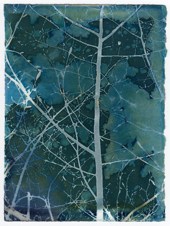 Tiled Leaf