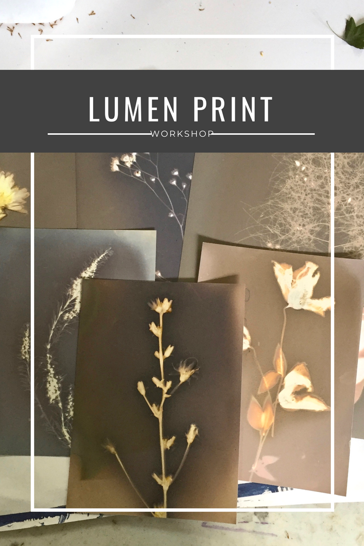 lumen print workshop pinterest.png