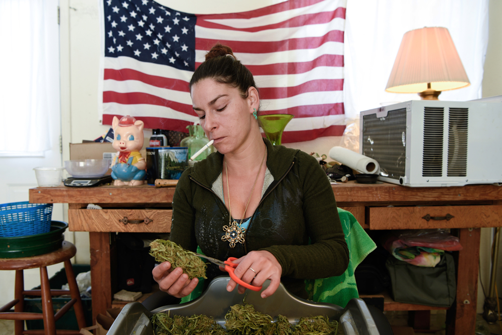Denise from Romania trims weed in her home garage near Nevada City