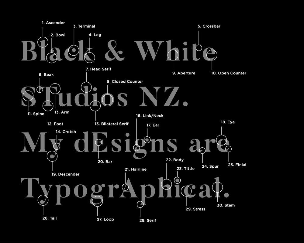 blackandwhitestudios-typographicanatomy