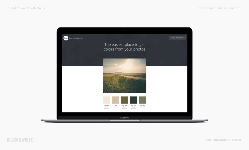 brand-colour-tools-canva.png