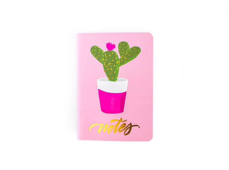 cactus notebook .jpg
