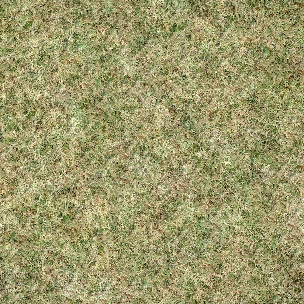 Grass_Dead_01.png
