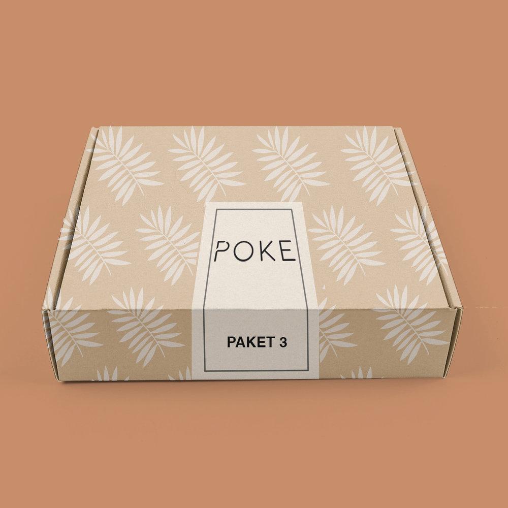 PAKETI-3 copy.jpg