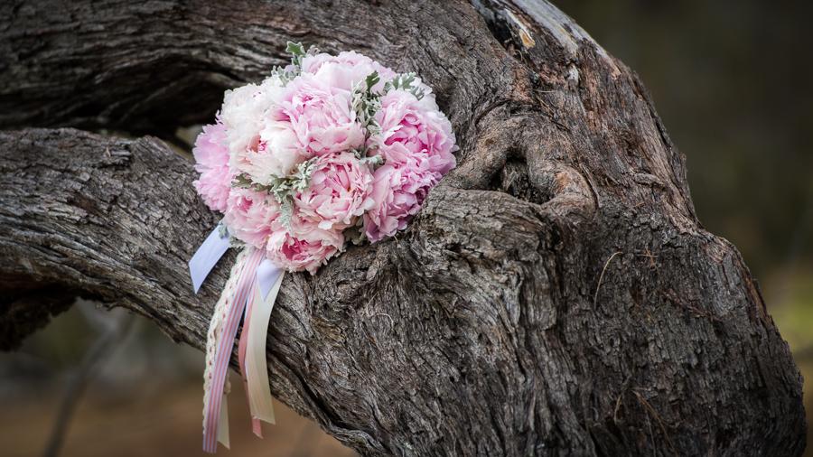 hervey bay wedding photographer-12.jpg