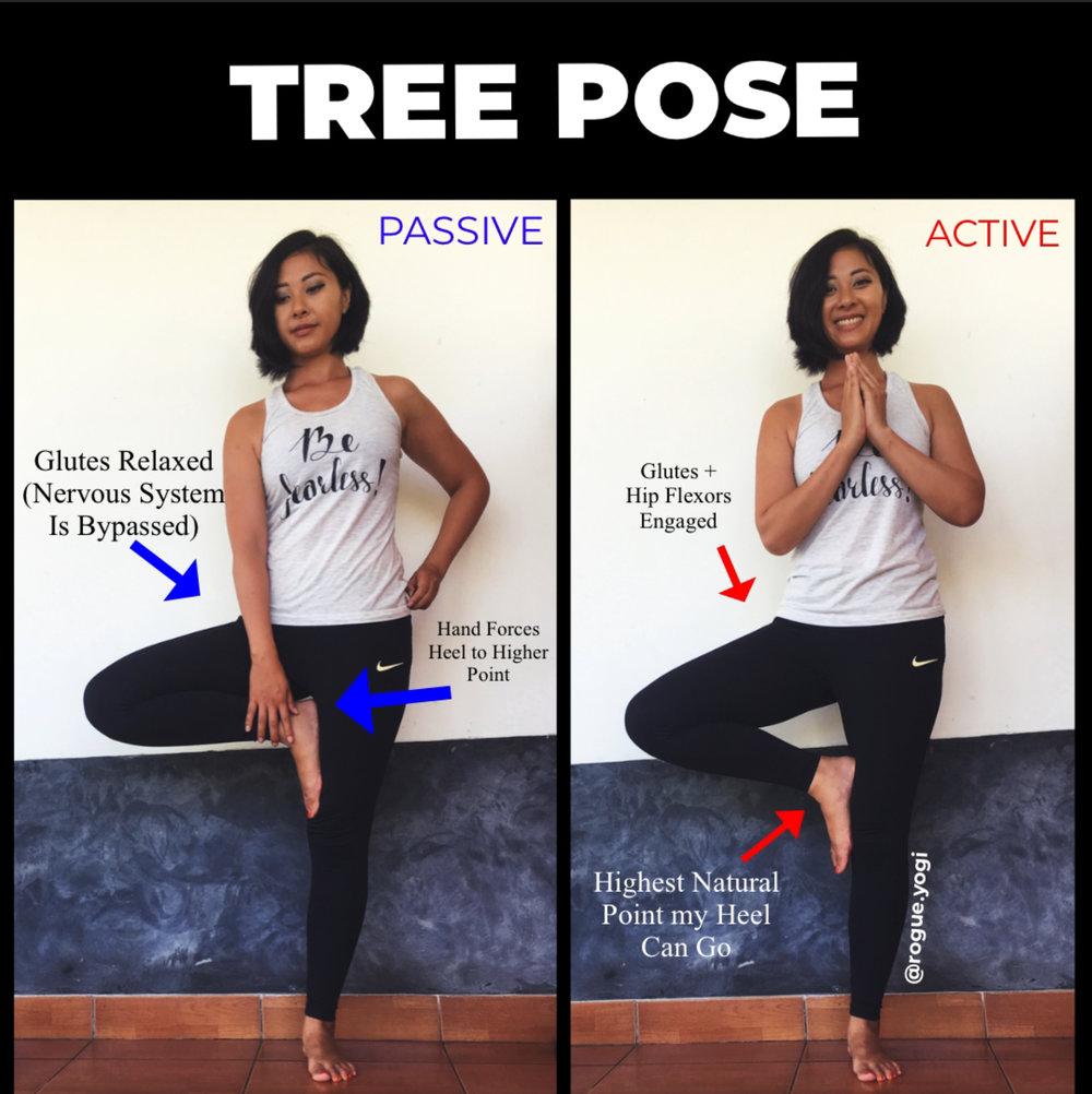 online_yoga_tree_pose_beginners.jpg