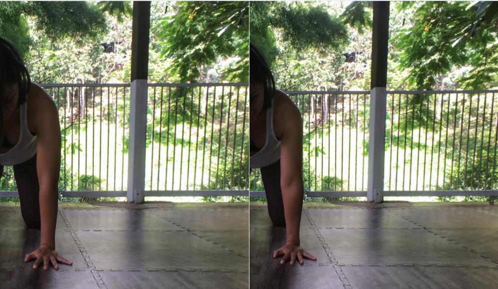 online_yoga_beginners_cat_cow_internal_external_rotation.png