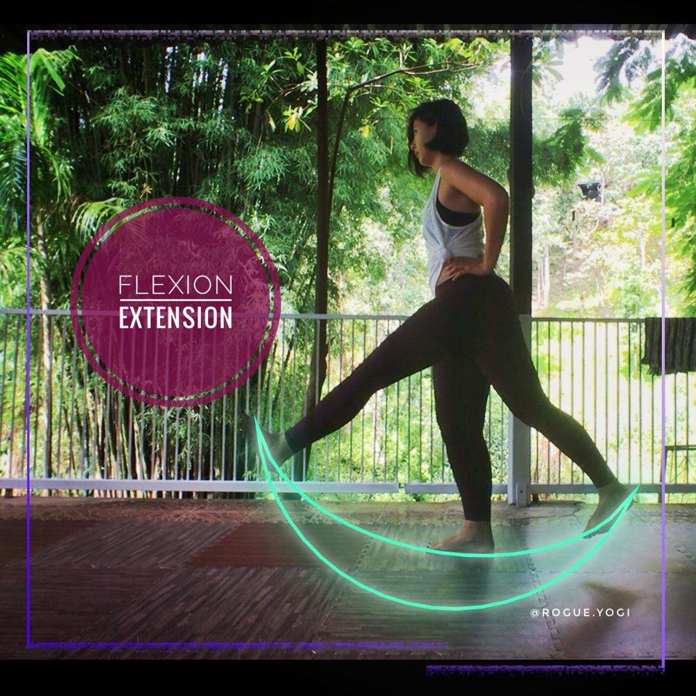 online_yoga_beginners_leg_extension_flexion.jpg
