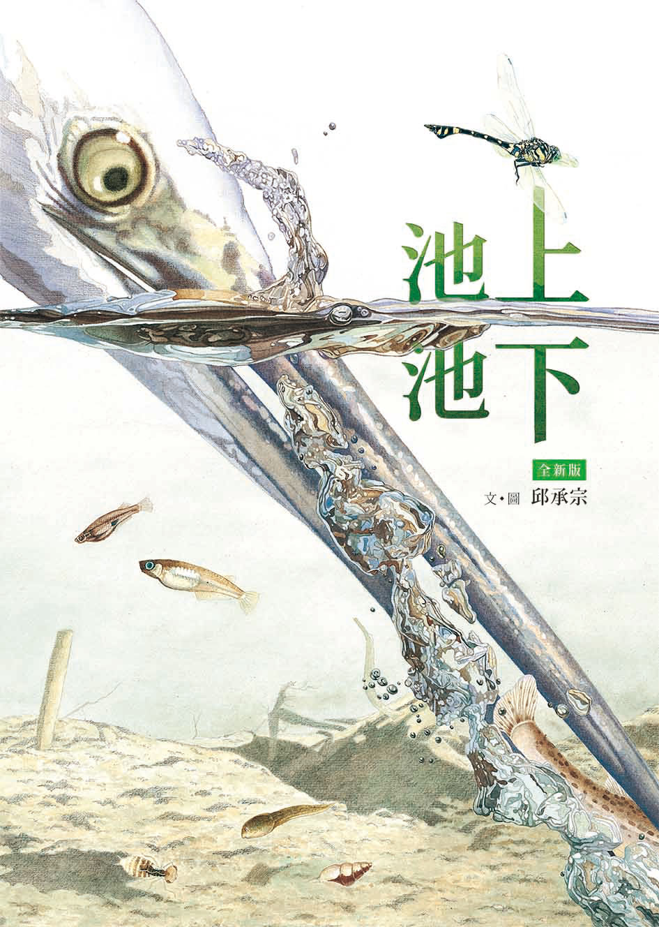 Hsiao Lu Publishing Co. Ltd.|小魯文化事業股份有限公司   50pages|21.5×29.6cm|978-986-211-481-0   CONTACT INFO:   Yulan Chen Chief Editor| yulan@tienwei.com.tw   Tel:+886-2-2732-0708 ext.22