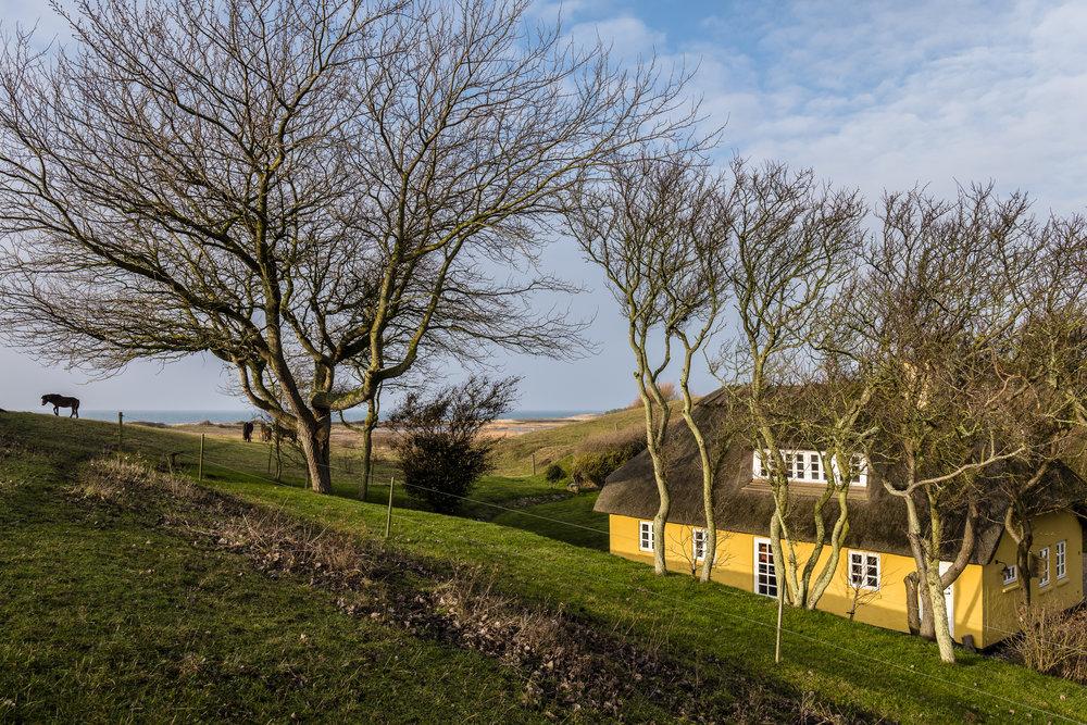 Huset ligger mindre end 300 meter fra stranden midt i Klise Nor, en 4,6 hektar stor strandeng som afgræsses af en lille flok vilde heste.