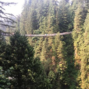 Capilano Suspension Bridge Vancouver.png