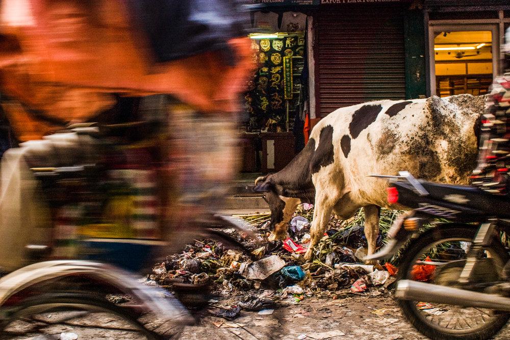 CSPHOTO_NEPAL_HD-51.jpg