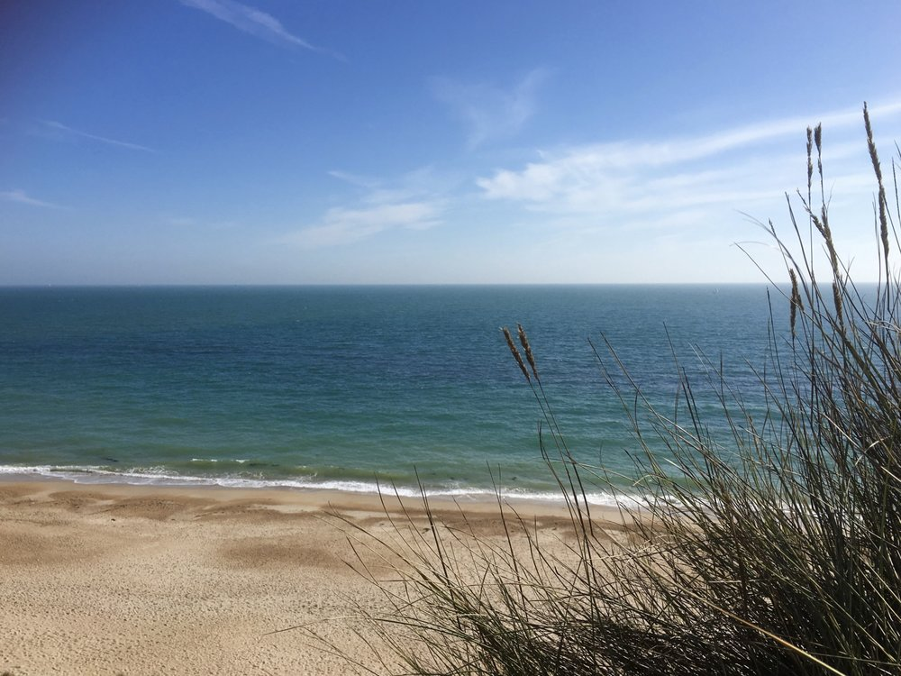 - Instantly relax as you settle into Dorset's beautiful coastal surroundings.