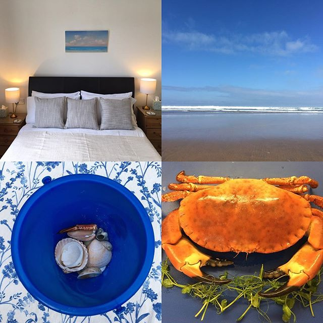 UK Dorset coastal holidays simply breathtaking...have a look at our guesthouse for a nurturing home from home, next to the beach holiday www.artiststudiobnb.uk  #ourbnbmemories #travelerschoice2019 #southbourne #wearetravelmums #ukholidays #ukholidaydestination
